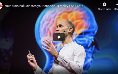 Your brain hallucinates your conscious reality | Anil Seth