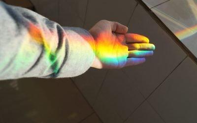 LSD vs Psilocybin